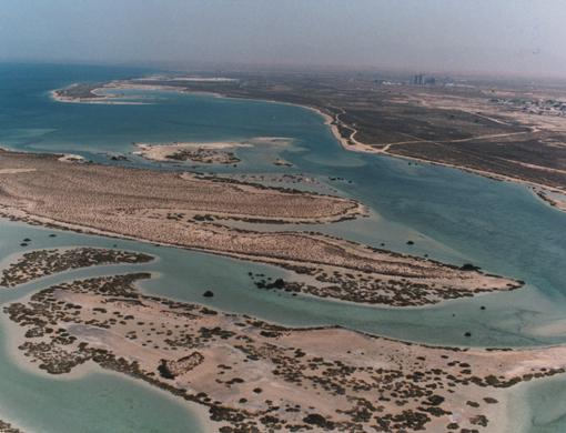 Al Sinniyah Island